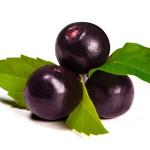 Acai Berry: Zašto je ova superhrana dobra za vas
